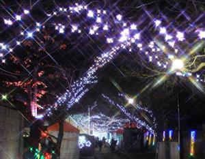 いばらき光の回廊-2