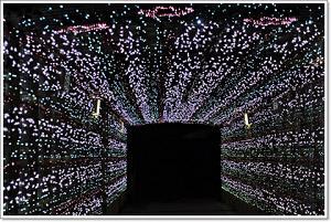 いばらき光の回廊-6